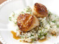 Scallops with Apricot Sauce ~ http://steamykitchen.com
