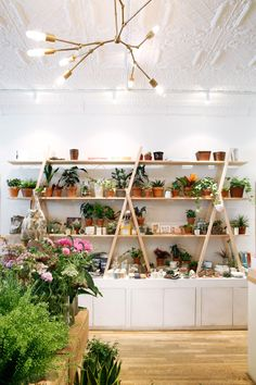 Homecoming or Caffe Spina in Greenpoint, Brooklyn // via Spotted SF - Modern Shop Interior Design, Cafe Design, Store Design, Florist Shop Interior, Flower Shop Interiors, Coffee Flower, Flower Tea, Flower Shop Design, Flower Boutique
