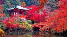 INOVAR TOUR: Templo Daigo-ji em Kyoto, Japão