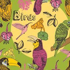 Fototapeta F2700 - Różne gatunki ptaków