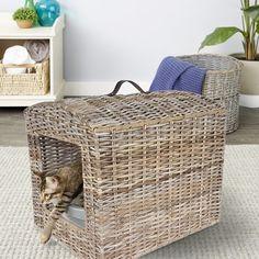 Cat Litter Cabinet, Cat Tree Designs, All Cat Breeds, Litter Box Enclosure, Cat Run, Cat Shelves, Outdoor Cats, Dogs And Kids, Cat Furniture