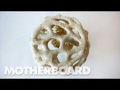 Fungus: The Plastic of the Future - YouTube