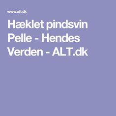 Hæklet pindsvin Pelle - Hendes Verden - ALT.dk