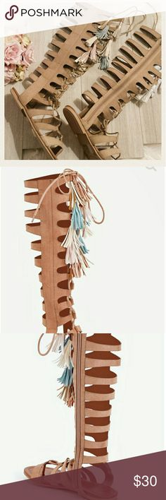 """Gladiator Fringe Sandals Gladiator Fringe Sandals size 9.  Faux suede gladiator lace-up sandals. Heel: 1/4"""". Inside zipper.  Never worn. NWOT. JustFab Shoes Lace Up Boots"""