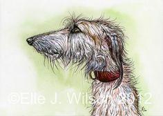 The Perfect Rascal Lurcher Hound Art Dog Print by Illustrations, Illustration Art, Illustration Techniques, Chien Basset, Scottish Deerhound, Irish Wolfhounds, Dog Artist, Greyhound Art, Lurcher