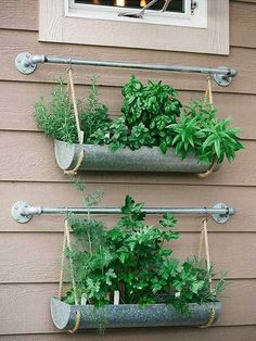 If you're working with a small backyard or patio, use a vertical garden to grow your vegetables, herbs, and other plants. These DIY vertical gardens will help you grow the best herbs you've ever tried. Check out these unique planters using a shoe rack, paint cans, gutters and more unique everyday items! #verticalgardens #uniquepatio