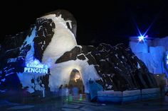 InsidetheMagic explores our newest attraction, Antarctica: Empire of the Penguin, under the stars. #Antarctica #SummerNights