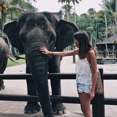 Love them  #lovelypepa #lovelypepatravels #bali #indonesia