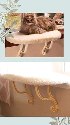 Lóżko dla kota, pomysł na piękny wystrój domu