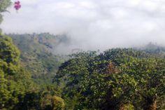 Bandarban Pahar by sanjit1883 on 71pix.com