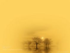 Burden of dreams by ghankrit
