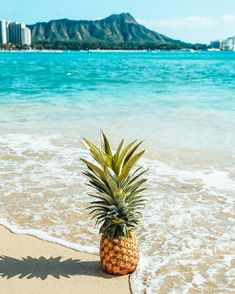 Pineapple on the beach on Oahu, Hawaii. The ocean is the perfect shade of turquoise, the sea foam hits the pineapple at exactly the right place and it's shadow is cast perfectly on the sand that's unaffected. Iphone Wallpaper Pineapple, Pineapple Backgrounds, Live Wallpaper Iphone, Beach Wallpaper, Summer Wallpaper, Images Wallpaper, Wallpaper Backgrounds, Screen Wallpaper, Wallpaper Quotes