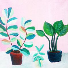 Plants on Pink No. 5 - an original acrylic painting, plants painted on a pink background door XantheCS op Etsy