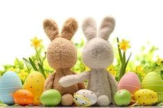 Here you will find Easter Day Bunny images, Easter Day Bunny, history of Easter Day, Happy Easter Easter Bunny Wallpapers 2017 Easter Bunny, Easter Eggs, Hoppy Easter, Mothers Day Gifts Uk, Ostern Wallpaper, Easter Backgrounds, Holiday Backgrounds, Happy Easter Everyone, Easter Weekend