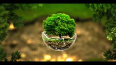green nature photo manipulation spheres surreal