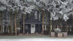 Tiny-House Winter & Trees  #tinyhouse #winter #tree #klein #wonen #wonenlandelijkestijl #lovelyday #dinsdag #tuesday #drenthedoetwatmetje #perfectecombinatie #mypicture #phonepicture #nofilters