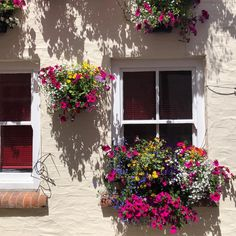 The prettiest windows in Padstow . . . #cornwall #seaside #ukbeach #ukholiday #holiday #family #familyholiday #kid #kidlife #mum #mumlife #mumblogger #lifestyleblogger #preschool #padstow #harbour #pub #windowboxes #england #cornishmum #cornwallmum #londonmum #citymum #flowers #gardening #pub #parenting #motherhoodunplugged #prettypub #thelondoninn