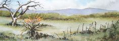 Landscape with Aloe; Watercolour, Pen and Ink; Watercolours, Aloe, Watercolor Paintings, Wildlife, African, Birds, Ink, Landscape, Scenery