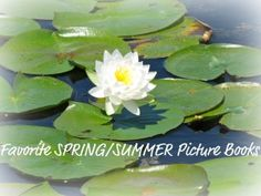 10 Favorite Spring and Summer Picture Books