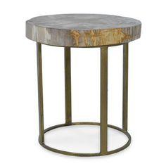 Petrified Wood Slab Table Round Base 624179