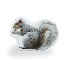 ":: Handmade in Brooklyn, this quirky ""couch art"" pillow is decorated with an original large-as-life photograph of a squirrel in Central Park, and then printed on cotton sateen, hand stuffed and sewn. Outdoor Outfitters, Holiday Boutique, Sleeping Under The Stars, Dot And Bo, Cozy Cabin, Furniture Collection, Winter White, Central Park, Decoration"