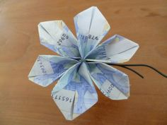 marly design: geld bloem / money flower