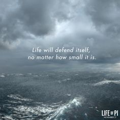 Life will defend itself, no matter how small it is. Beautiful Film, Beautiful Words, Boring To Death, Life Of Pi, Penny Dreadful, 26 Letters, Classroom Posters, English Literature, Good To Know