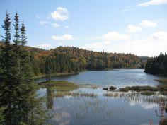 A Northern Ontario river Quebec, Lakes, Wilderness, Ontario, Coast, Canada, The Incredibles, River, City