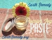 Poison Ivy Paste by Earth Remedy
