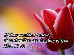 "INSPIRATION. BELIVE FOR GODS GLORY Jesus said to her, ""Didn't I tell you that if you believed, you would see God's glory?"" (John 11:40) Faith is an important factor in moving Kingdom of God into action. Because you belive in Jesus you too shall see Gods glory. If dead Lazarus can come alive after 3 days, your dead situations shall also be revived. Believe for  manifestaion of Gods glory. Have a bkessed day(VJR.Roy)"