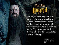 I took Zimbio's 'Harry Potter' personality quiz and I'm Hagrid! Who are you? #ZimbioQuiznull - Quiz