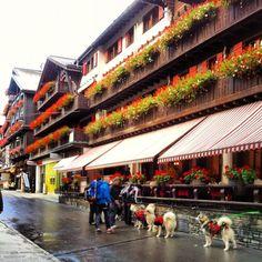Zermatt in Wallis
