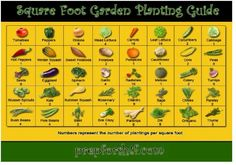 Square Foot Gardening Chart | square foot garden planting guide