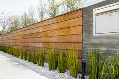 Love this mix of wood boards and board form concrete. Garden design by Carolyn Mullet.