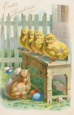 Easter postcard with chicks and colored eggs.