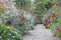 stone path, cottage garden