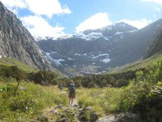 Come and explore the alpine world of Fiordland with botanist, Professor Alan Mark. Take a walk through the spectacular Gertrude Valley and learn about the amazing plants found there. Saturday 10 January 2015. FREE.