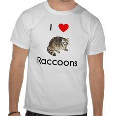 Shop I love raccoons T-Shirt created by towalj. Personalize it with photos & text or purchase as is! Raccoons, Funny Cute, Cover Photos, Animal Photography, Wolves, Panda, Fitness Models, Creatures, Queen