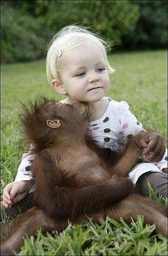 Beste Freunde - Kleines Mädchen und Orang Utan Baby