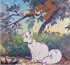 He's Abraham Delacey, Geosapecasey, Thomas O'Malley, O'Malley the Alley cat! Favorite part of the movie!  (Sorry Aristocat fans, not sure about that spelling! Ha! Kidding.)