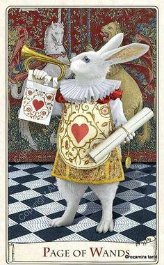 O coelho branco- special 2