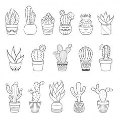 Set of 16 cactuses and succulents in flower pots. Home cactus plants with prickles and flowers. Exotic tropical collection of various succulents — Stock Illustration Ink Doodles, Flower Doodles, Kawaii Illustration, Plant Illustration, Cushion Cover Inspiration, Desert Tattoo, Succulents Drawing, Cute Coloring Pages, Bullet Journal Ideas Pages