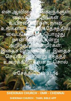 Tamil Christian, Tamil Bible