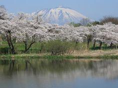 高松公園(岩手県盛岡市)