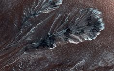 New HiRISE Image of the Northern Plains of Mars - This new image from NASA's Mars Reconnaissance Orbiter shows frost in gully alcoves in a crater on the Northern plains of Mars. Image Credit: NASA/JPL/University of Arizona