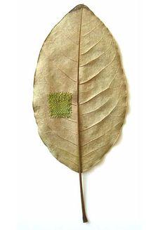 Susanna Bauer embroidered leaf