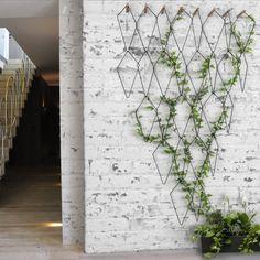 """<p style=""""text-align: justify;"""">Si vous disposez d'un grand espace, optez pour un <strong>mur végétal</strong>. Vous obtiendrez une déco hors norme et 100 % green.</p>"""