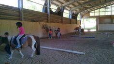 C'è chi monta e chi pulisce il pony Pony, Pony Horse, Ponies, Baby Horses