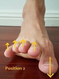 Do you want to fix your flat feet? Here is a list of the best exercises on how to fix flat feet. Eliminate your fallen arches and regain your foot arch! Ankle Strengthening Exercises, Ankle Exercises, Scoliosis Exercises, Posture Fix, Bad Posture, Plantar Fasciitis Exercises, Fallen Arches, Flat Feet, Bunion
