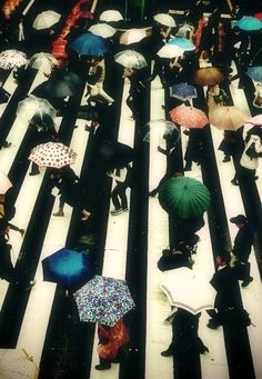 A great rainy day photo - get an aerial shot of all the umbrellas.